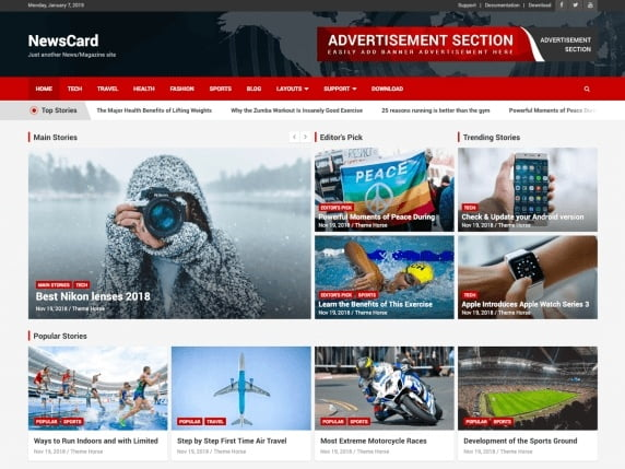 free and fast website themes for news-newscard