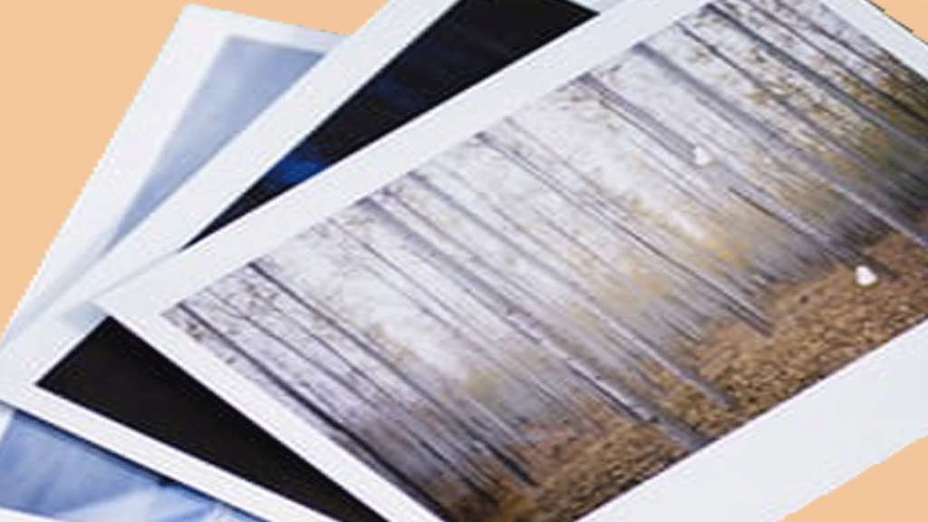 image optimization to grow your business!