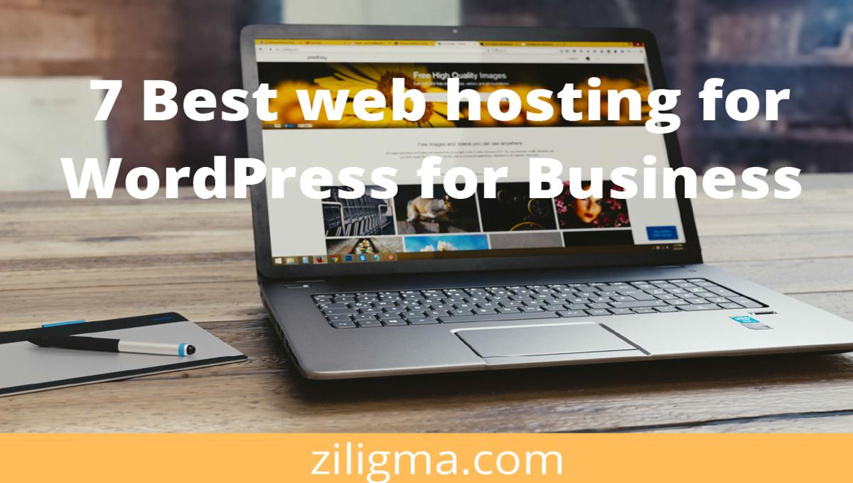 7 Best web hosting for WordPress for business